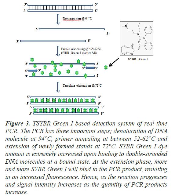 biochemistry-biotechnology-primer