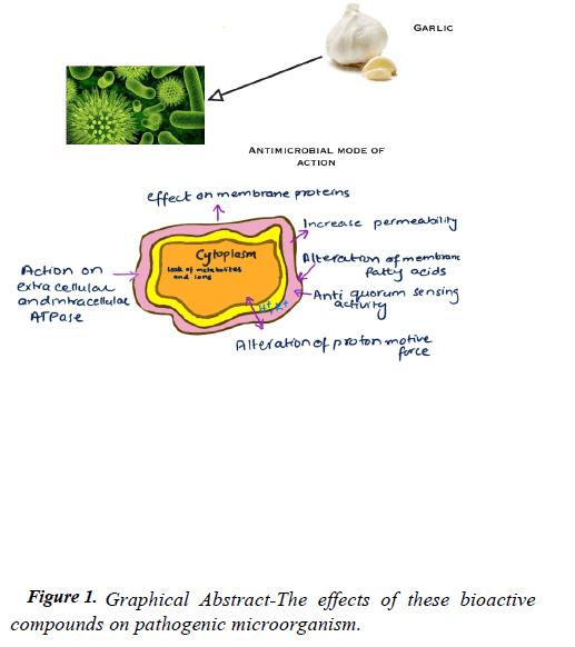 food-technology-bioactive