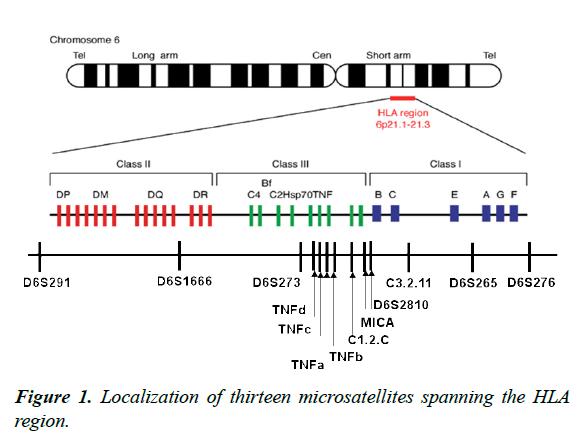 genetics-molecular-biology-microsatellites-spanning