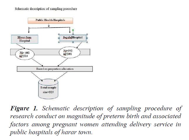 public-health-policy-planning-sampling-procedure