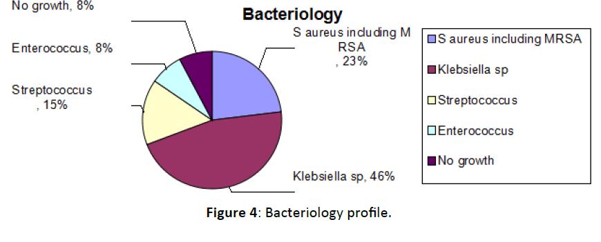 Otolaryngology-Bacteriology-profile