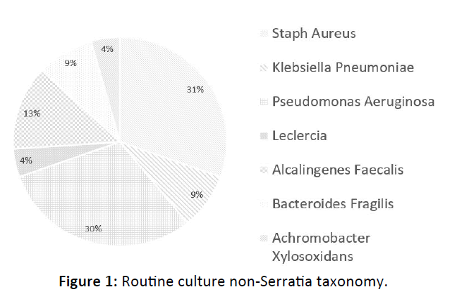 Otolaryngology-Nasal-Routine-culture