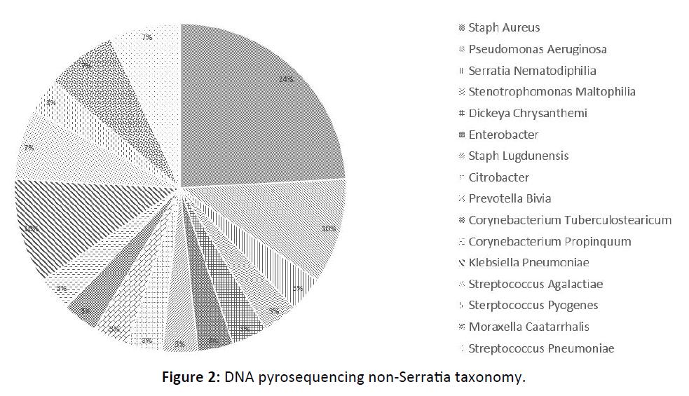 Otolaryngology-Nasal-non-Serratia
