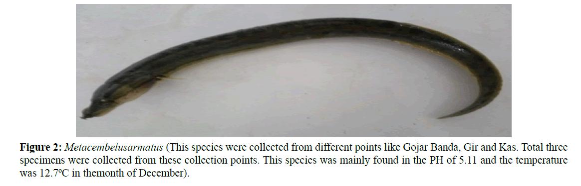 Pure-Applied-Zoology-Gojar-Banda