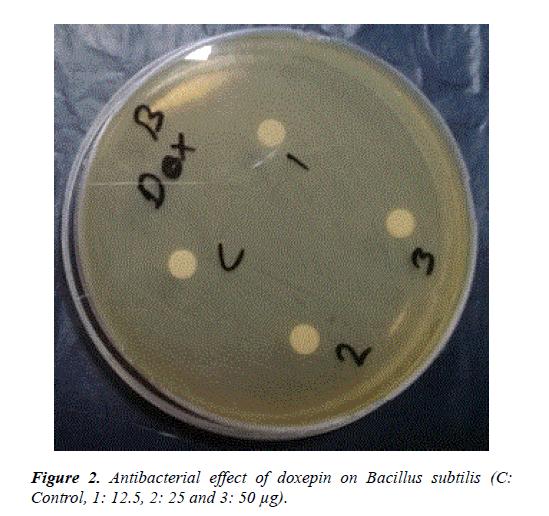 advances-cell-science-bacillus-subtilis