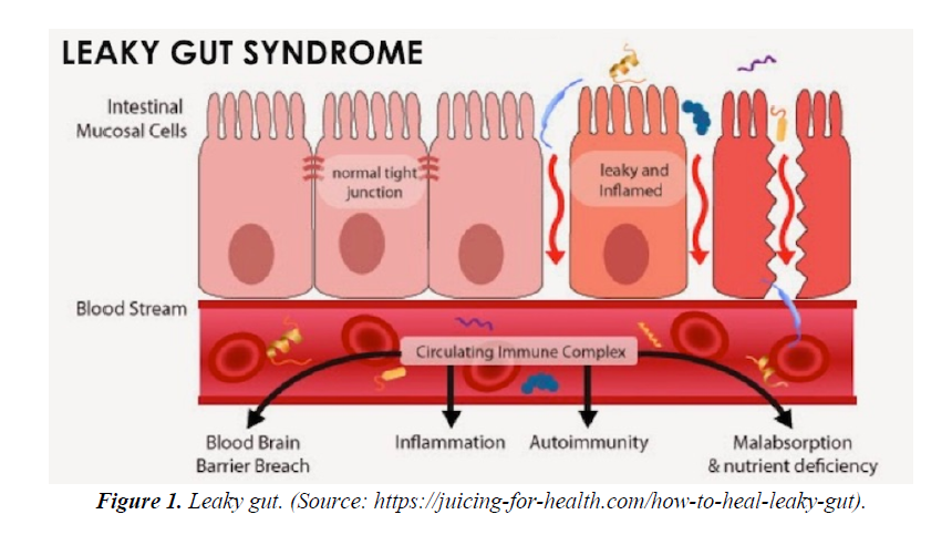 advances-cell-science-leaky-gut