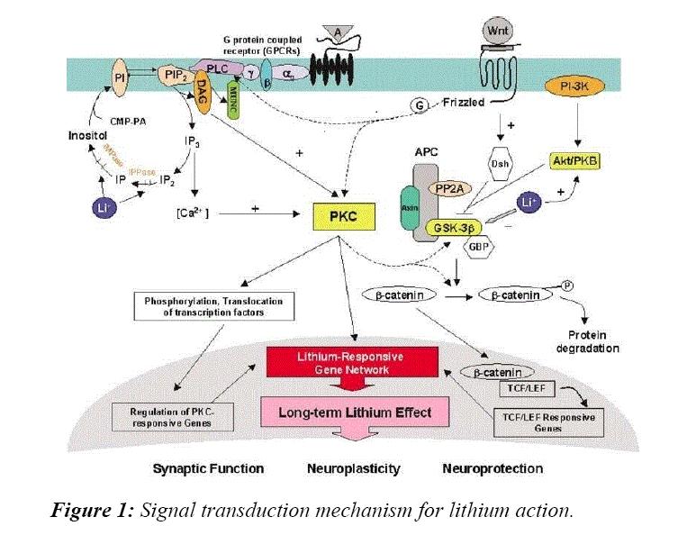 advances-cell-science-signal-transduction