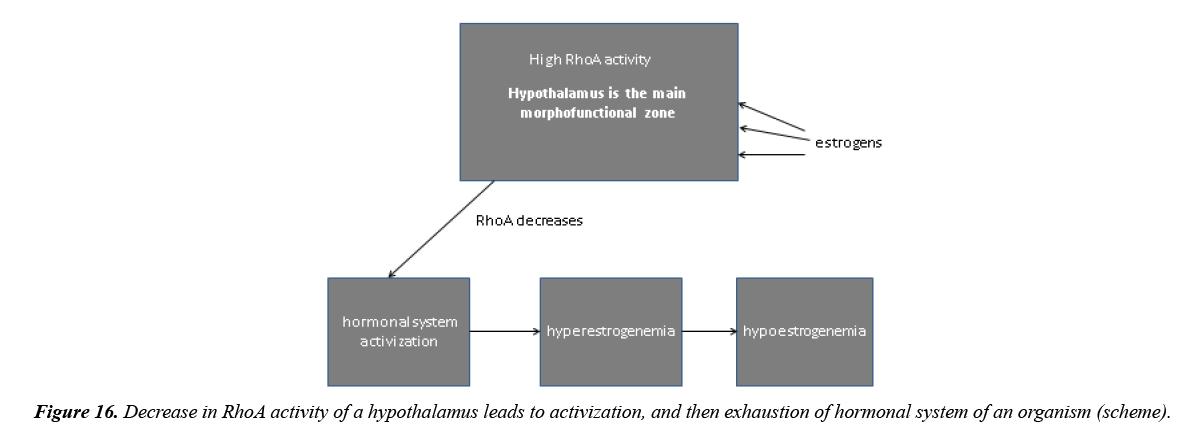 aging-geriatric-psychiatry-hypothalamus