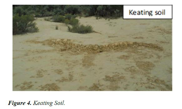 agricultural-science-botany-Keating-Soil