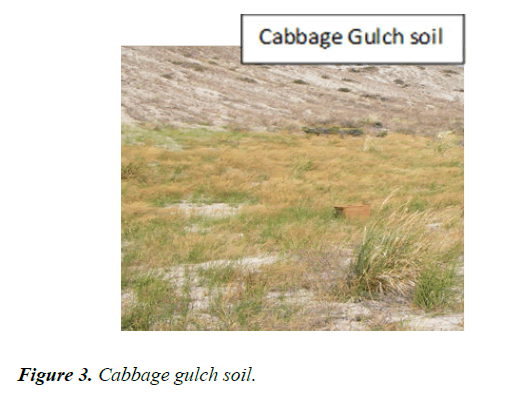 agricultural-science-botany-gulch-soil