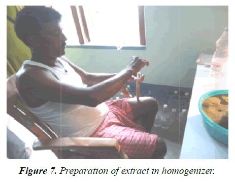 agricultural-science-botany-homogenizer