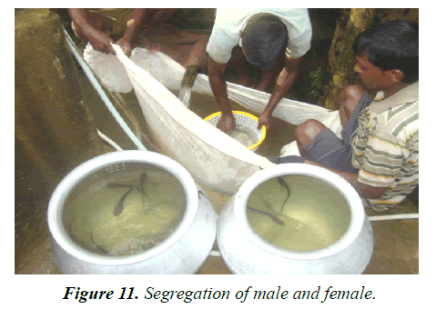 agricultural-science-botany-male-female