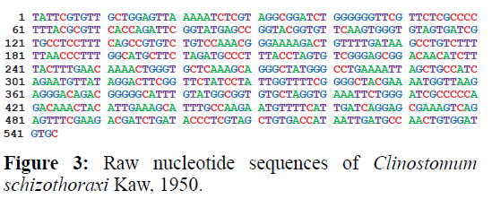 applied-zoology-nucleotide-organs