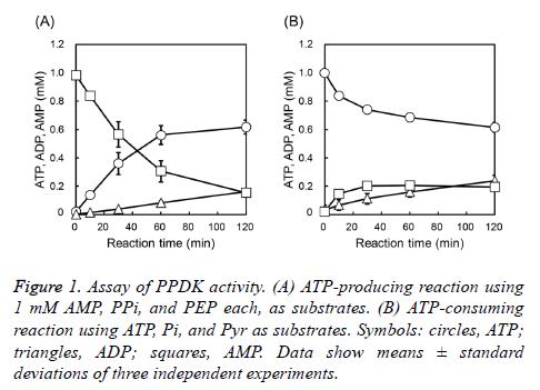biochemistry-biotechnology-PPDK-activity