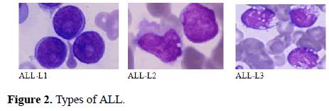biomedical-imaging-bioengineering-ALL
