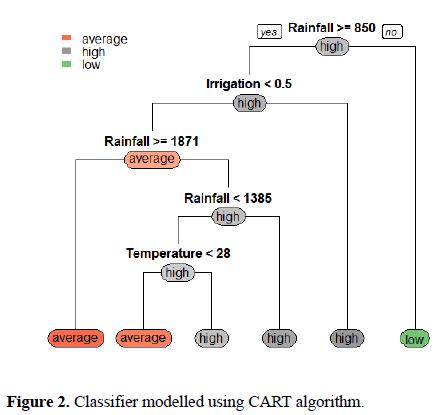 biomedical-imaging-bioengineering-CART-algorithm