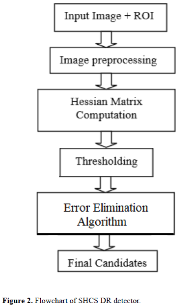 biomedical-imaging-bioengineering-Flowchart