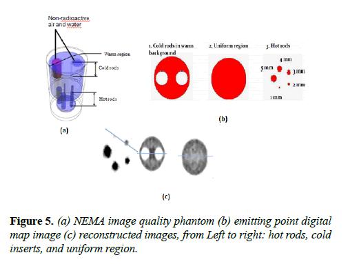 biomedical-imaging-bioengineering-NEMA-image