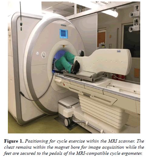 biomedical-imaging-bioengineering-Positioning-cycle