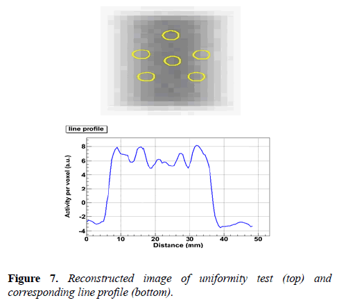 biomedical-imaging-bioengineering-Reconstructed-image
