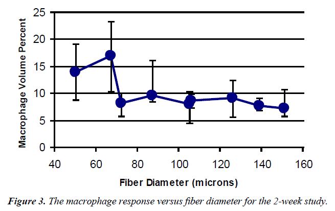 biomedical-imaging-bioengineering-macrophage-response