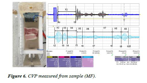 biomedical-imaging-bioengineering-measured