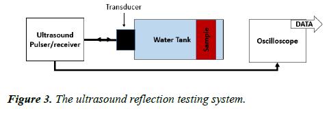 biomedical-imaging-bioengineering-reflection