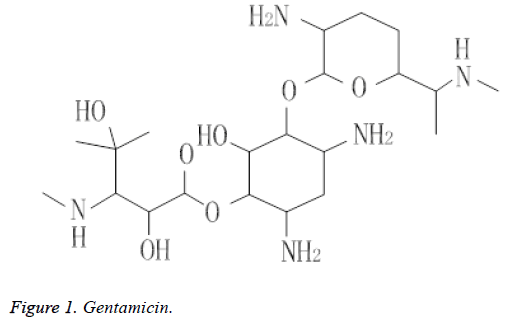 biomedical-pharmaceutical-sciences-gentamicin