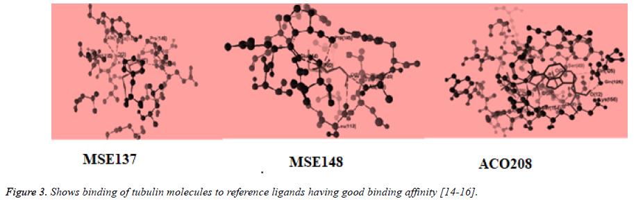 biomedical-pharmaceutical-sciences-good-binding