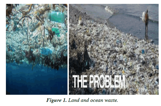 clinical-dermatology-ocean-waste