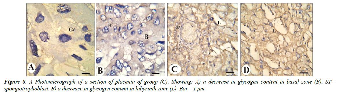 clinical-experimental-toxicology-decrease-glycogen