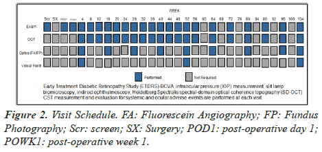 clinical-ophthalmology-vision-science-Fluorescein