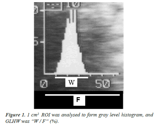 clinical-pathology-laboratory-medicine-gray-level-histogram