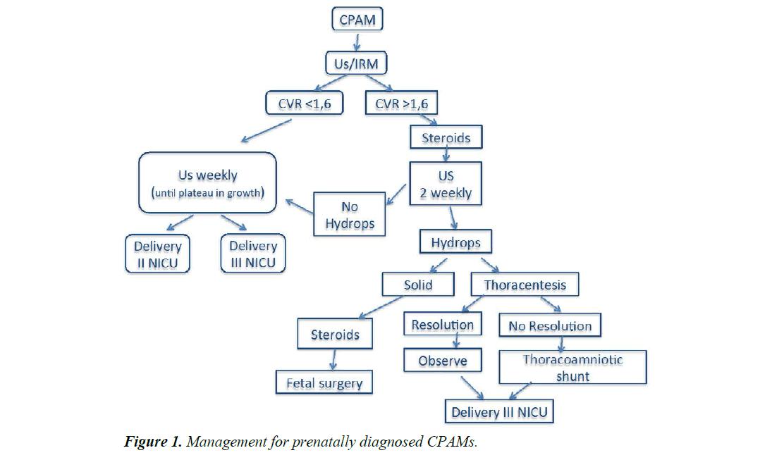 current-pediatric-research-prenatally-diagnosed