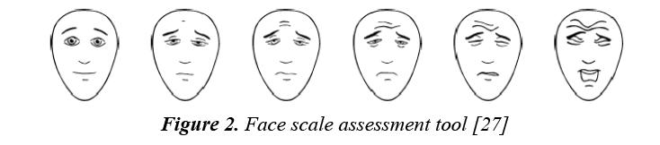 currentpediatrics-Face-scale-assessment