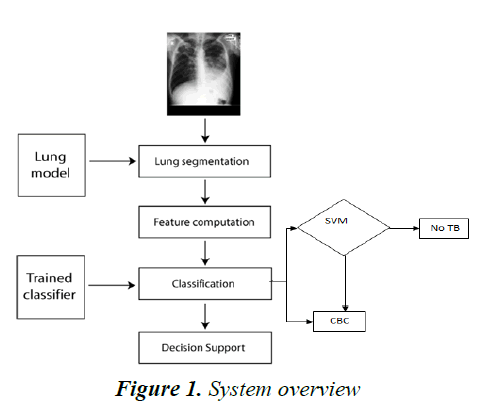 currentpediatrics-System-overview