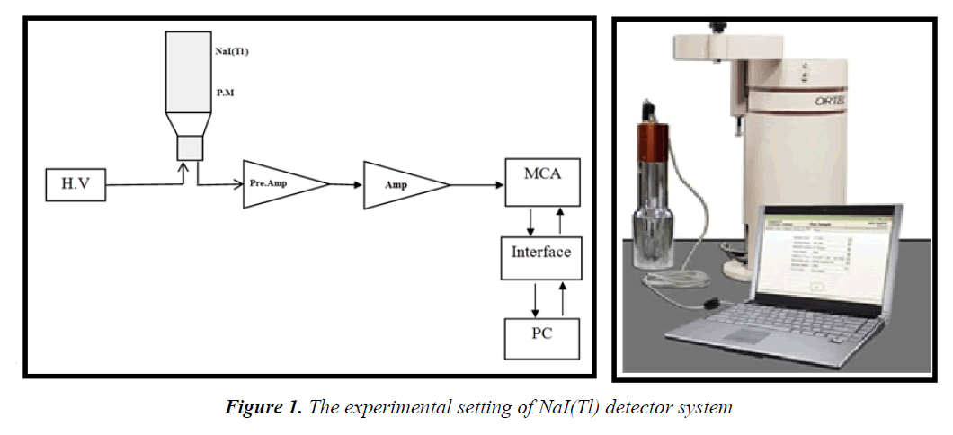 currentpediatrics-detector-system