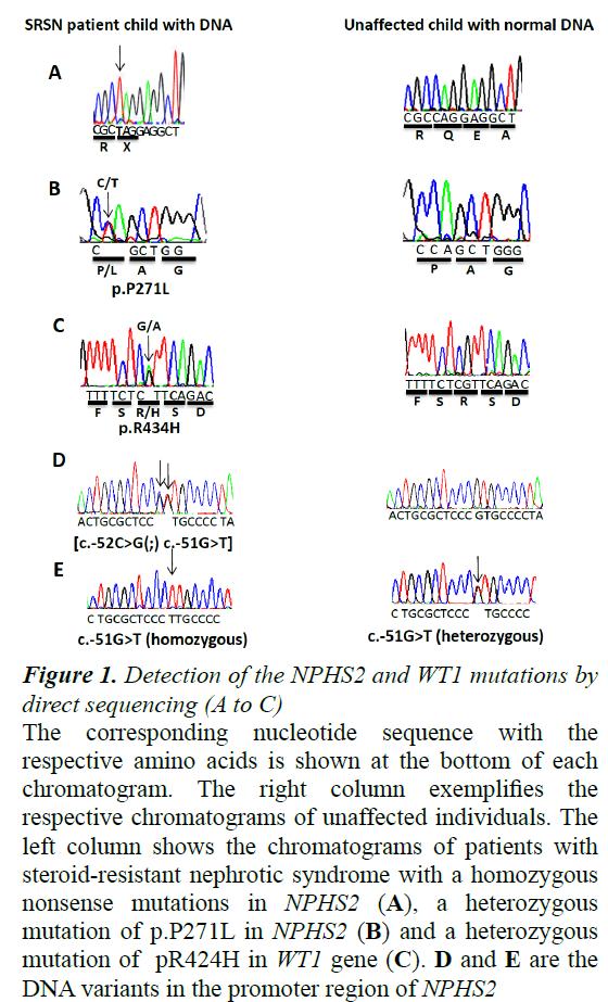 currentpediatrics-direct-sequencing
