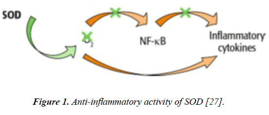 dermatology-research-skin-care-Anti-inflammatory