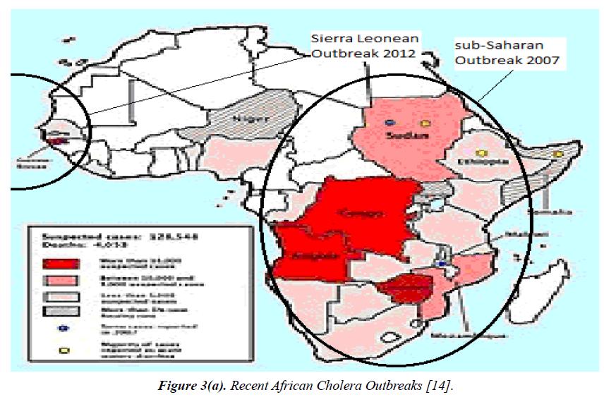 environmental-African-Cholera-Outbreaks
