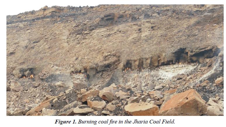 environmental-Burning-coal