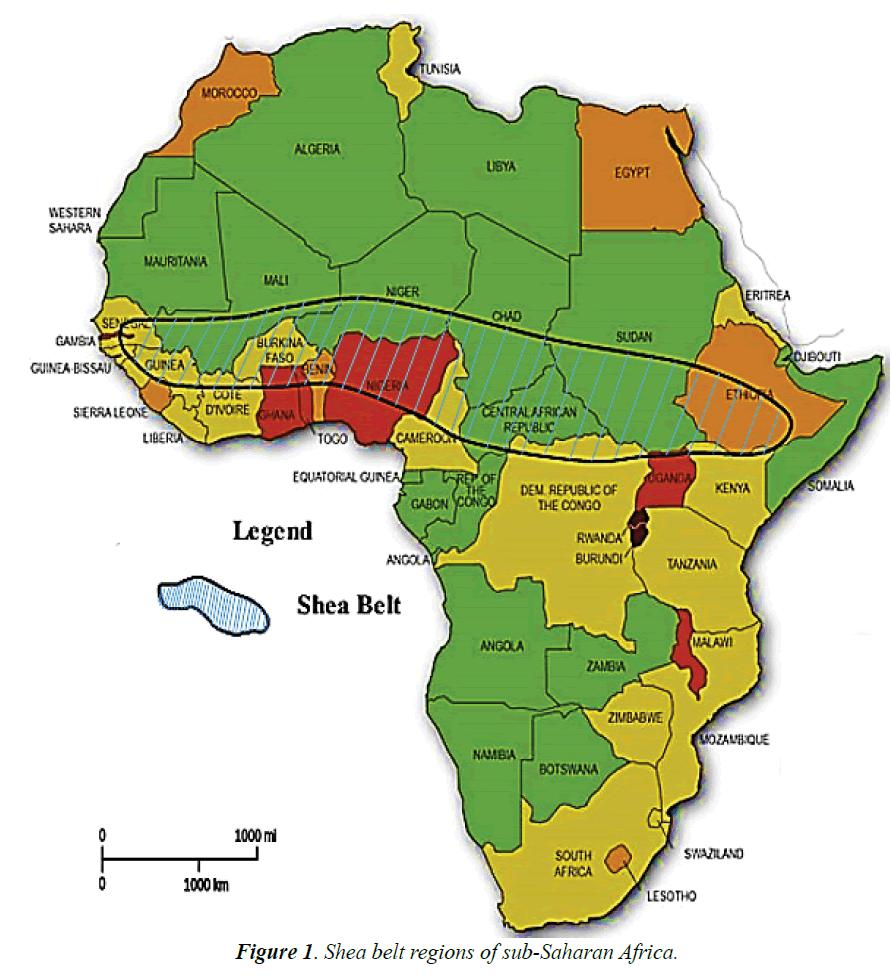environmental-Shea-belt-regions