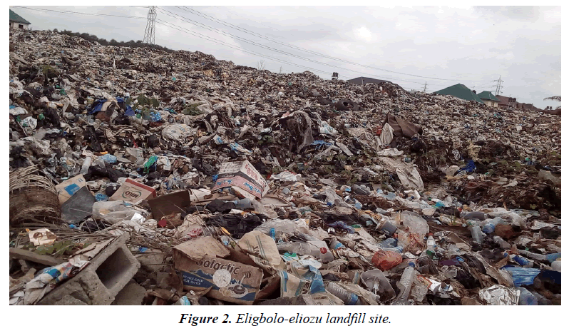 environmental-risk-assessment-Eligbolo-eliozu-landfill