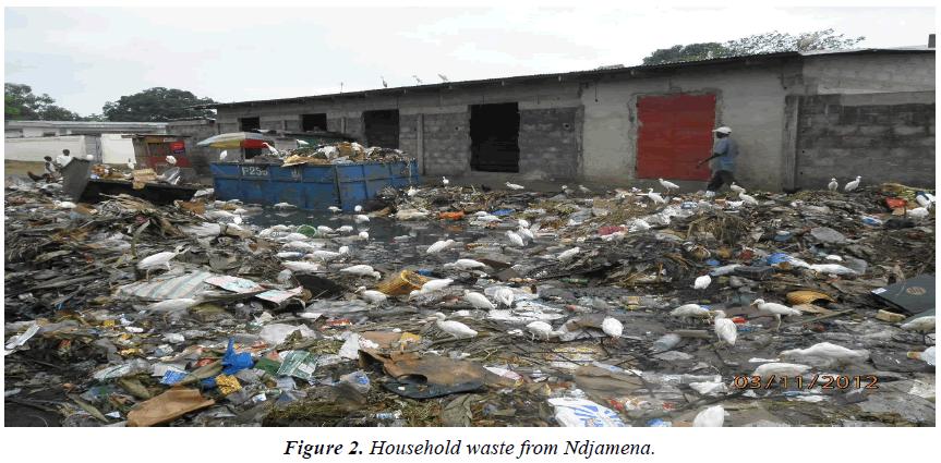 environmental-risk-assessment-Household-waste