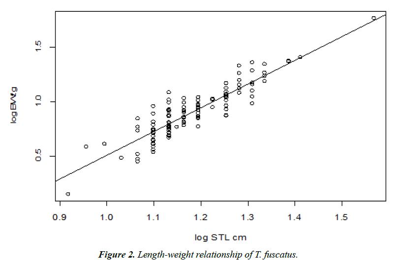 environmental-risk-assessment-Length-weight-relationship