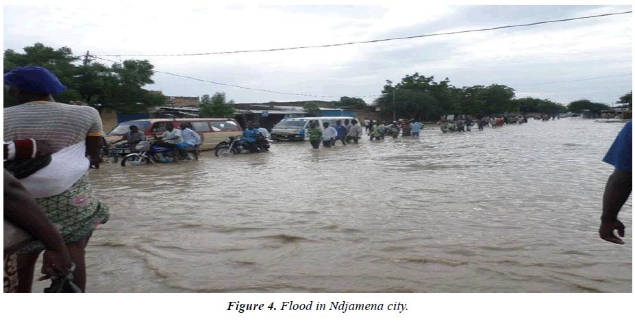 environmental-risk-assessment-Ndjamena-city