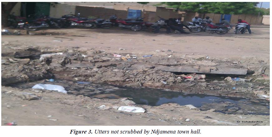 environmental-risk-assessment-Ndjamena-town