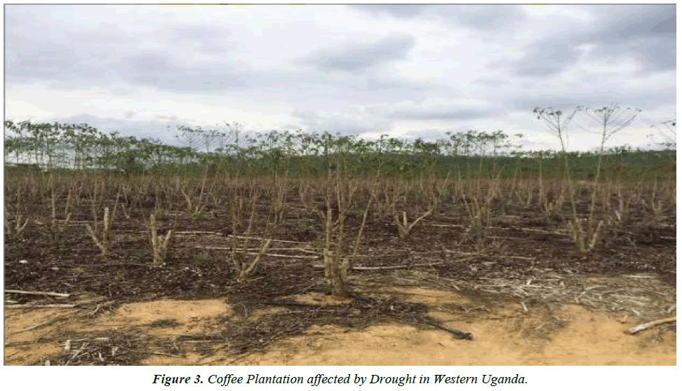 environmental-risk-assessment-Western-Uganda