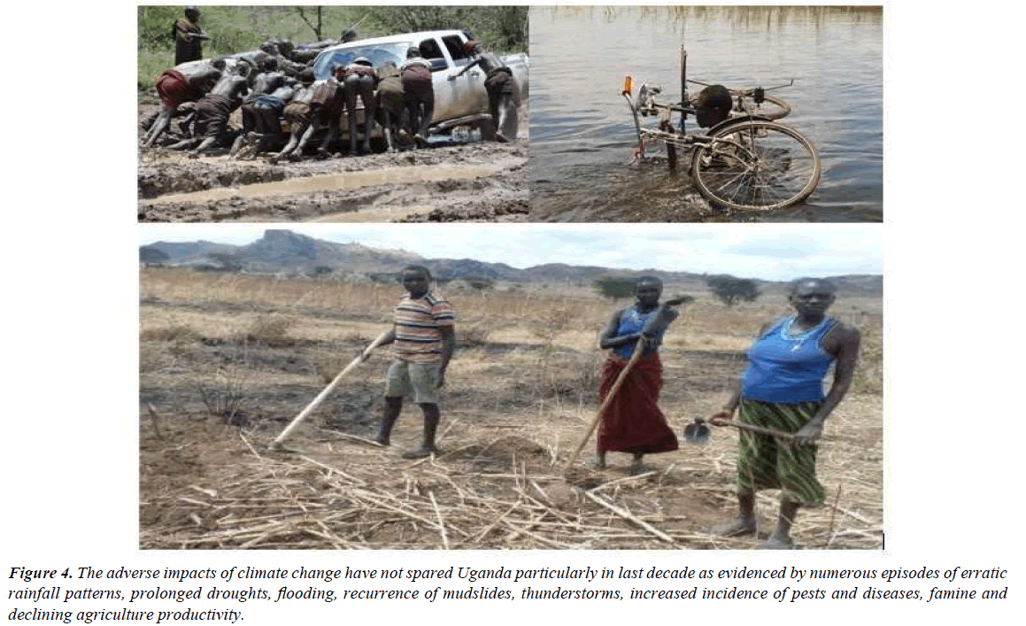 environmental-risk-assessment-agriculture-productivity