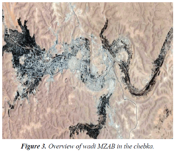 environmental-risk-assessment-wadi-MZAB